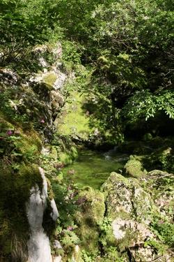 Šunik creek source